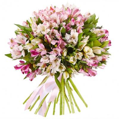 букет из 25 веток Альстромерий - Цветы - Днепр