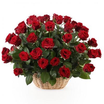 51 красная роза в корзине - Сорт Гран-При или Престиж