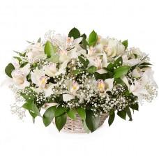 Белые орхидеи в корзине № 47