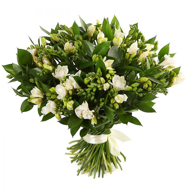 Bouquet white from 71 freesia flowers delivery city dnipro in bouquet of 71 white freesia white mightylinksfo