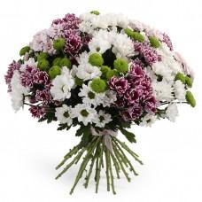 Весенняя хризантема № 25