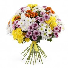 31-cluster-chrysanthemum-mix-flowers-sto
