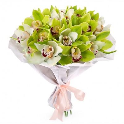 Букет: 25 белых и зеленых орхидея цимбидиум  - цветы - Днепр