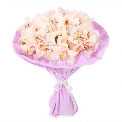 Букет: 25 белых орхидея цимбидиум  - цветы - Днепр