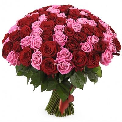 Букет 101 красная и розовая роза - сорт Гран-При и Аква