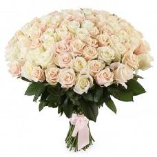 101 Белая и Кремовая роза Аваланч и Талея