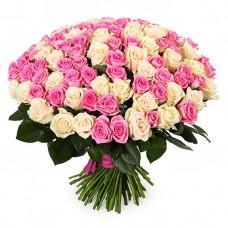 101 Кремовая и Розовая роза Аваланч и Аква