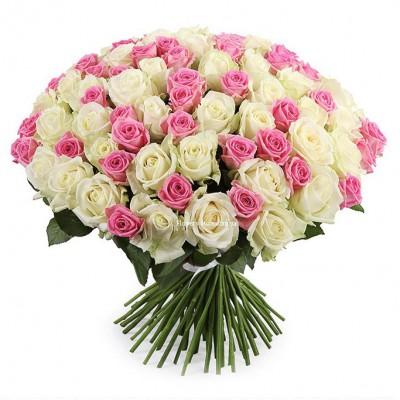 Букет 101 белая и розовая роза - сорт Аваланч и Аква