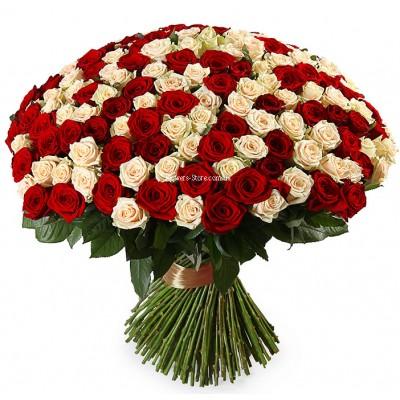 Букет из 201 розы микс - сорт Талея и Гран-При
