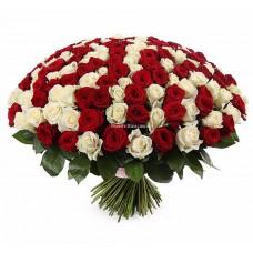 201 роза - Белая и Красная
