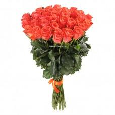 51 оранжевая роза Вау