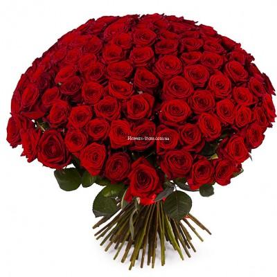 Недорогой букет: 101 красная роза - сорт Престиж