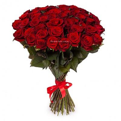 Недорогой букет: 51 красная роза - сорт Престиж