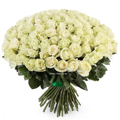 Букет 101 белая роза - сорт Мондиаль