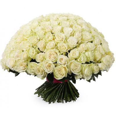 Букет 201 белая роза - сорт Мондиаль