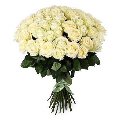 Недорогой букет: 51 Белая роза - сорт Аваланч