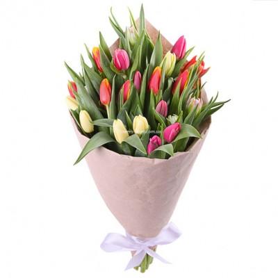 Букет разноцветных тюльпанов - 25 шт