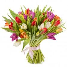 51 тюльпан микс  - радость
