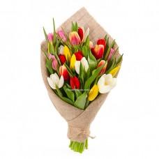 25 разноцветных тюльпанов - луч света