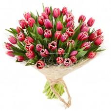 51 розовый тюльпан - Верона
