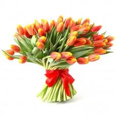 101 красно-желтый тюльпан - вера