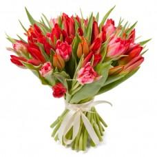 51 красно-розовый тюльпан - Страсть